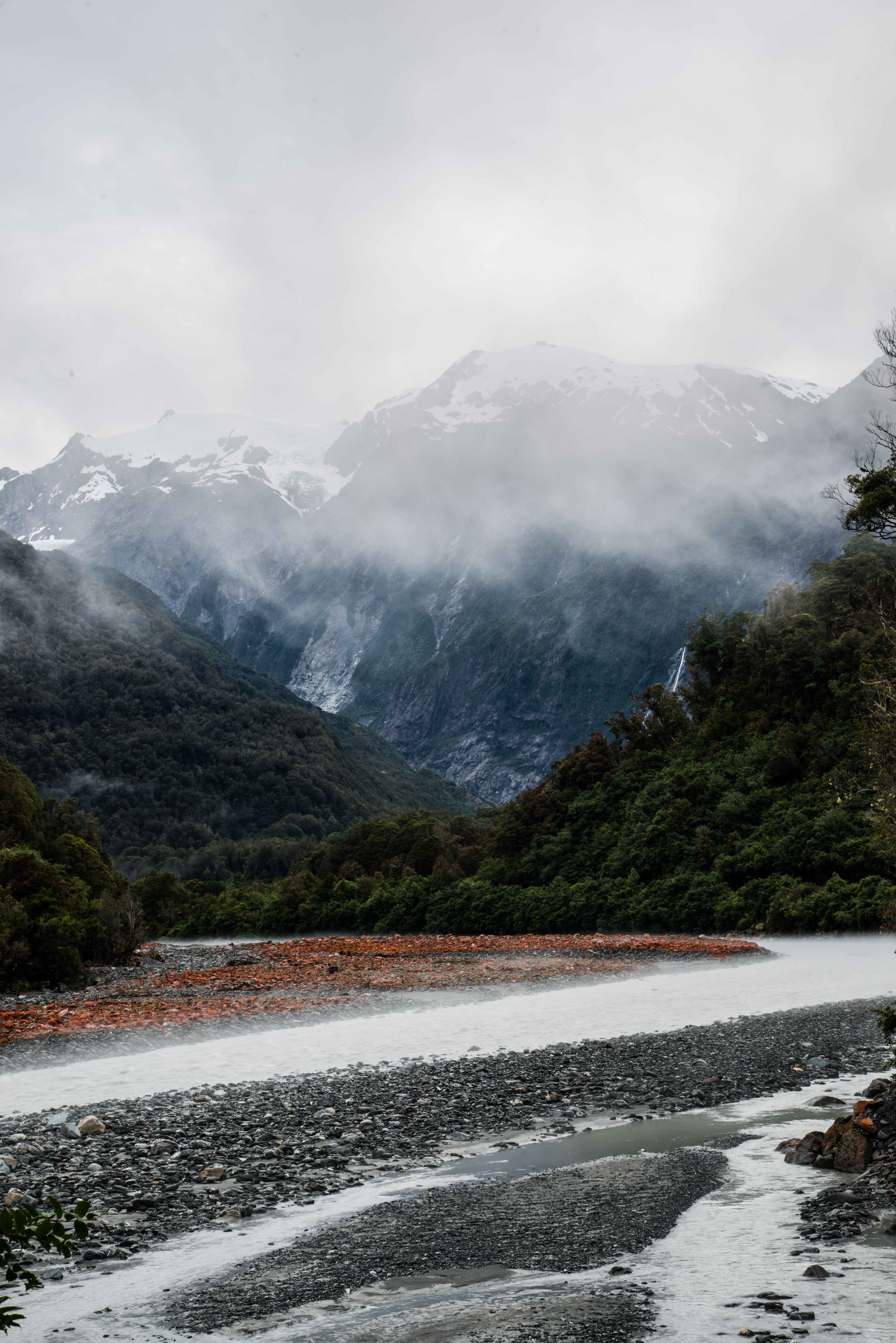 Overcast Fox Glacier, New Zealand